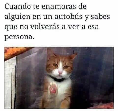 Marcianadas_231_1305161256 (167)