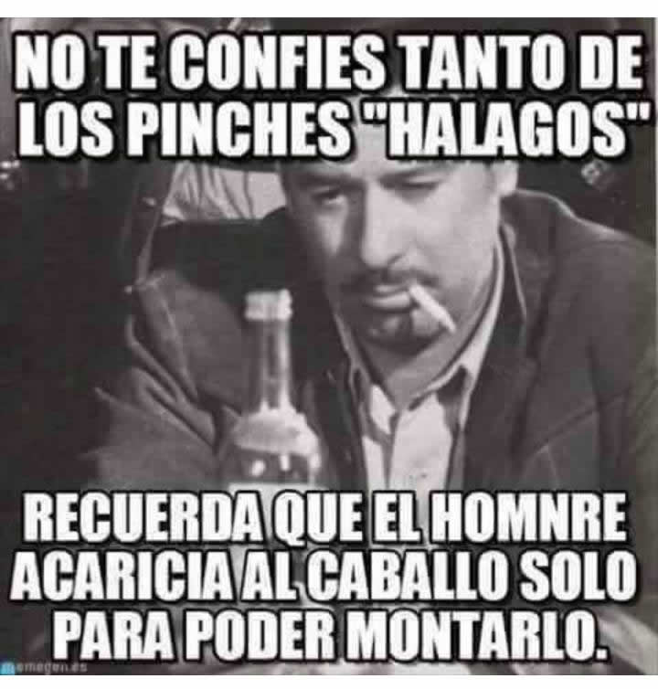 Marcianadas_231_1305161256 (177)
