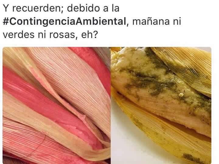 Marcianadas_231_1305161256 (257)