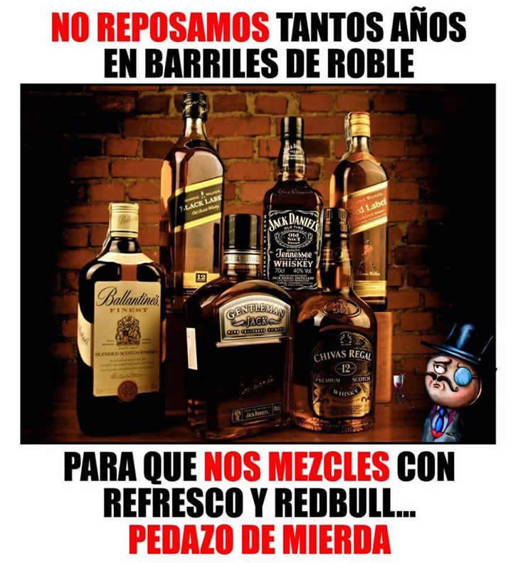 Marcianadas_231_1305161256 (67)