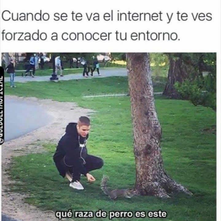 Marcianadas_232_2005161254 (124)
