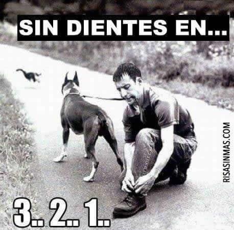 Marcianadas_232_2005161254 (146)