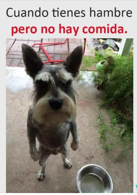 Marcianadas_232_2005161254 (157)