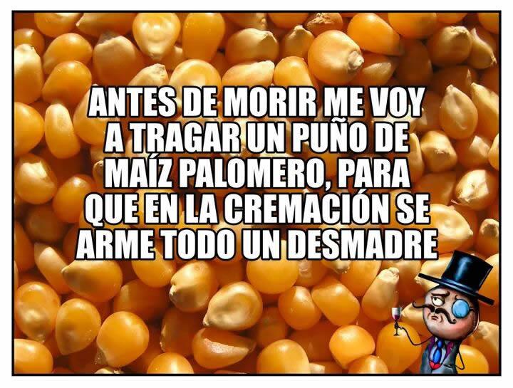 Marcianadas_233_2705160209 (132)