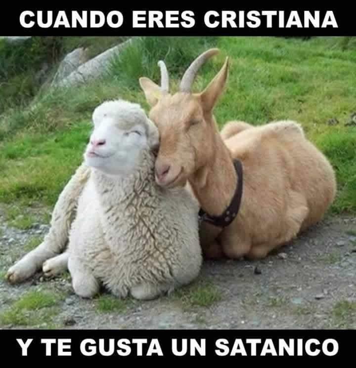Marcianadas_233_2705160209 (157)