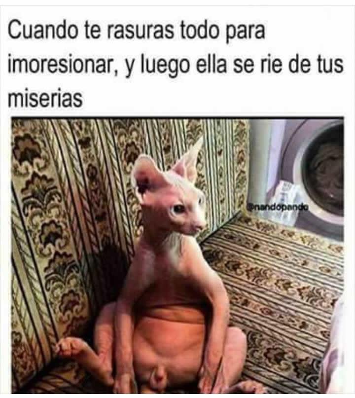 Marcianadas_233_2705160209 (178)