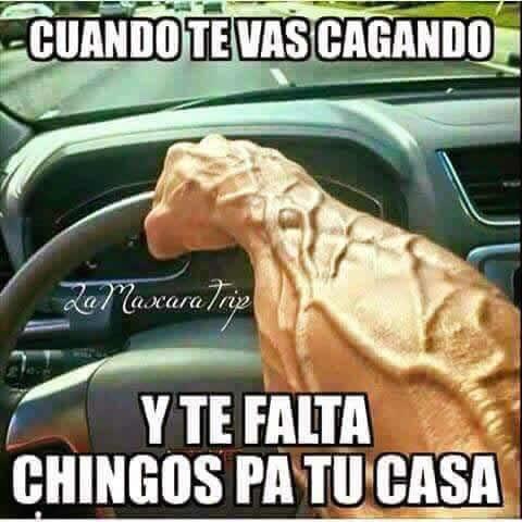 Marcianadas_233_2705160209 (212)