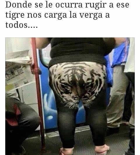 Marcianadas_233_2705160209 (220)