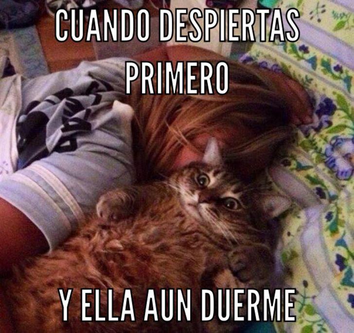 Marcianadas_233_2705160209 (35)