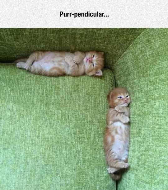 Marcianadas_233_2705160947 (23)
