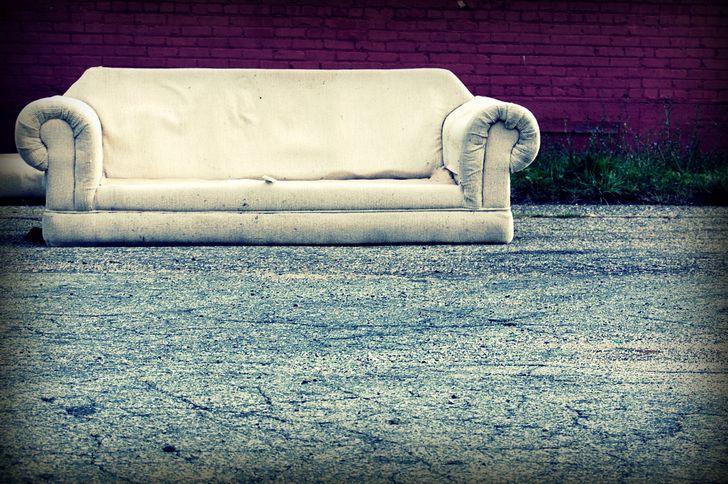 estupido y sencial sofa