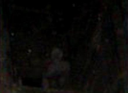 fantasma del centinela
