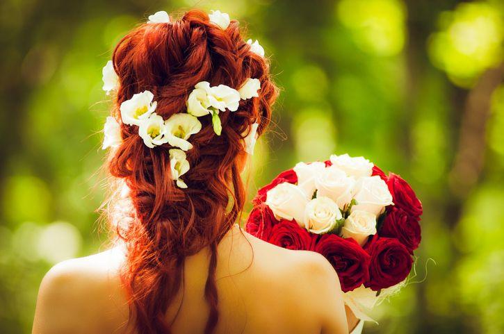 noviap peliroja