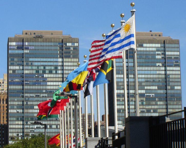 onu convencion banderas
