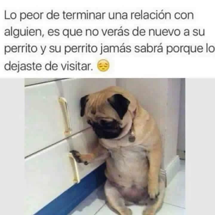 Marcianadas_234_0306160119 (107)