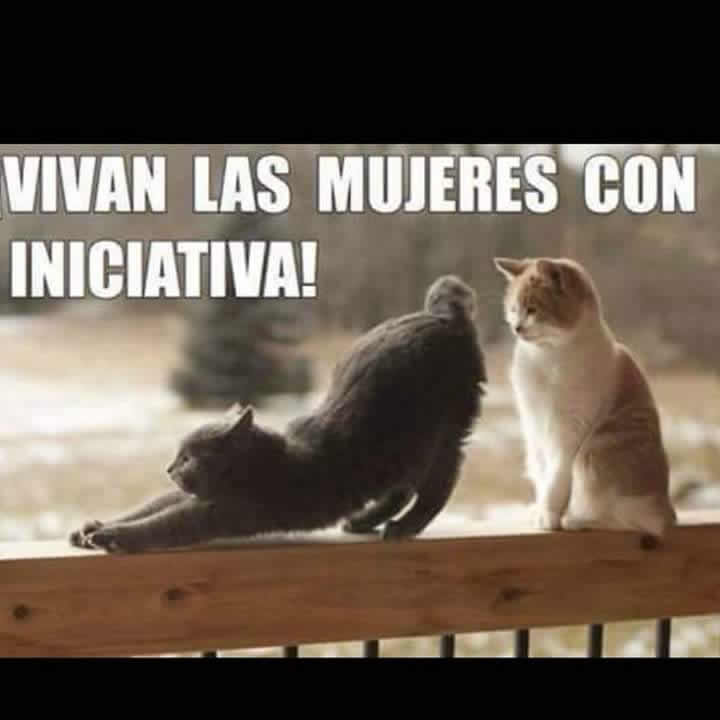 Marcianadas_234_0306160119 (124)