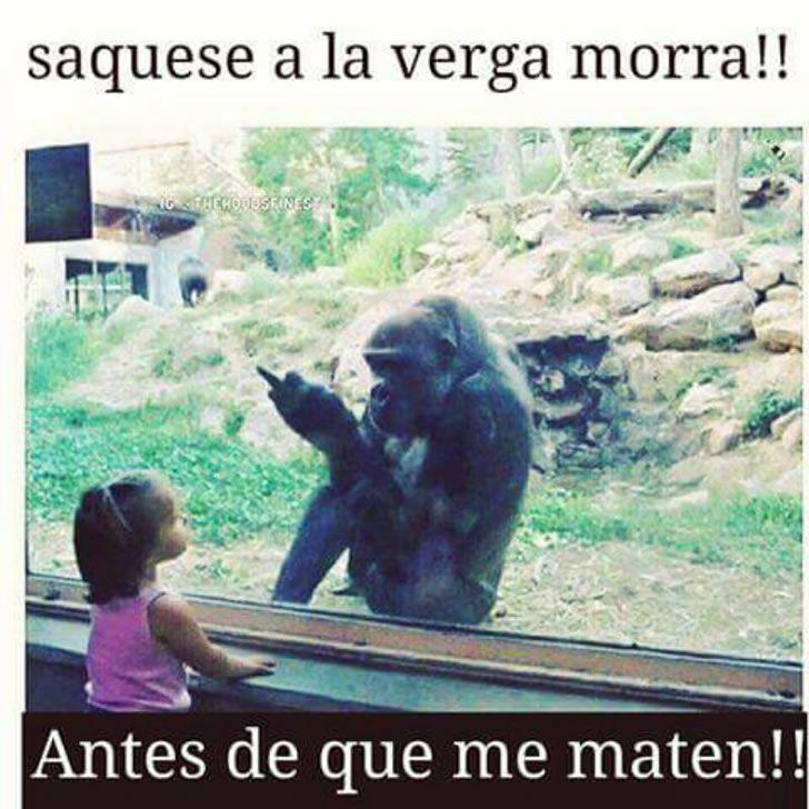 Marcianadas_234_0306160119 (161)