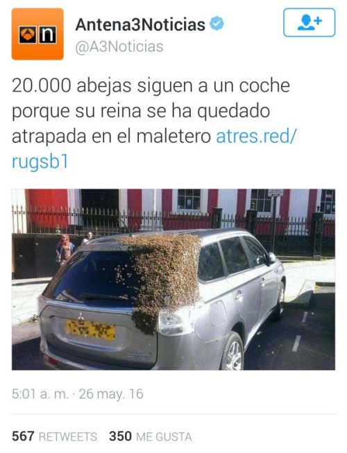 Marcianadas_234_0306160119 (6)