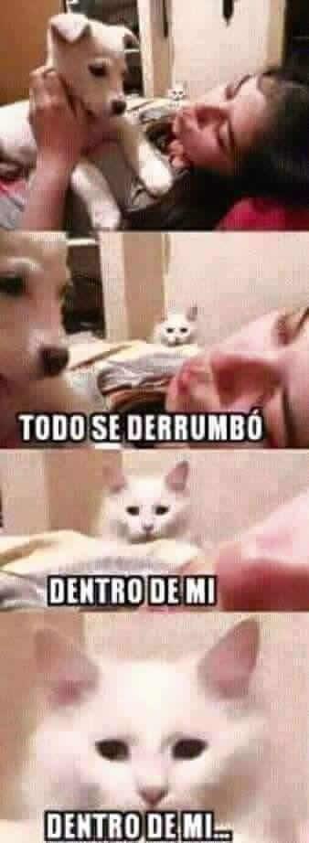 Marcianadas_235_1006160120 (112)