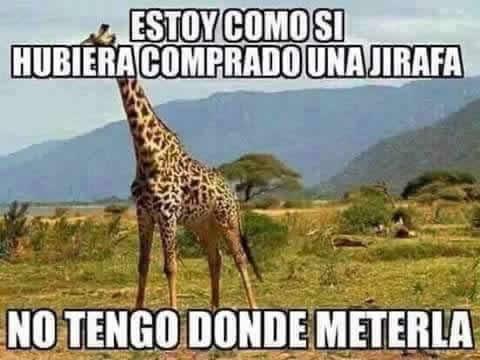 Marcianadas_235_1006160120 (118)