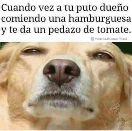 Marcianadas_235_1006160120 (132)