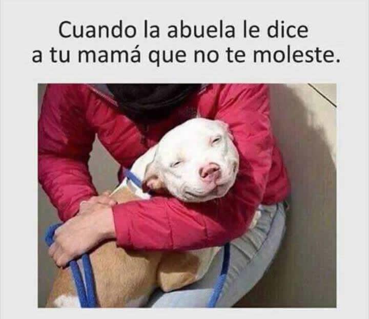 Marcianadas_235_1006160120 (146)