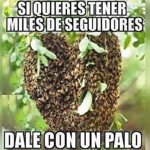 Marcianadas_235_1006160120 (164)