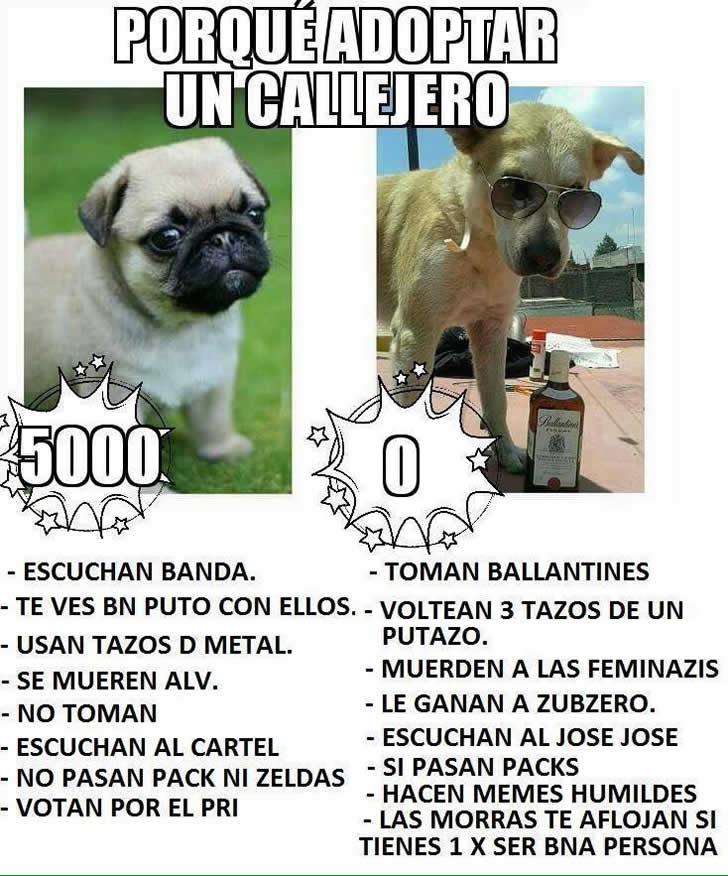 Marcianadas_235_1006160120 (183)