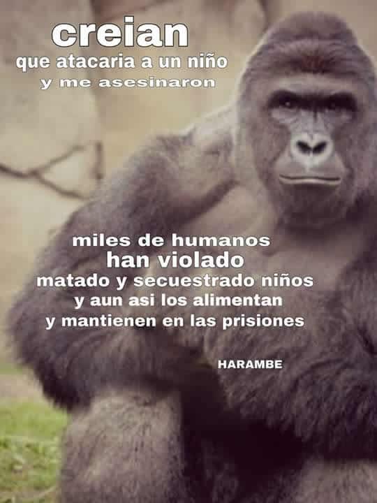 Marcianadas_235_1006160120 (23)