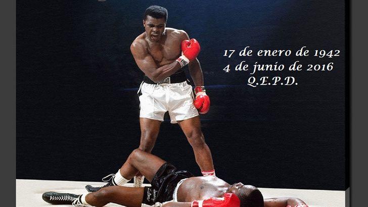 Marcianadas_235_1006160120 (309)