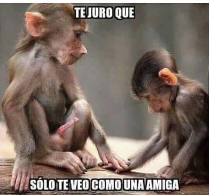 Marcianadas_235_1006160120 (64)