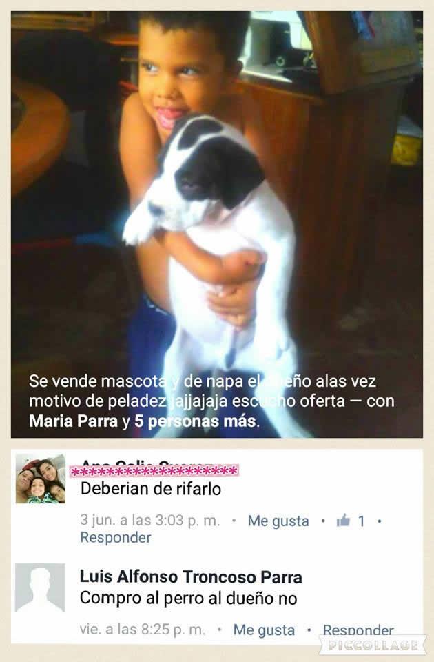 Marcianadas_235_1006160120 (92)