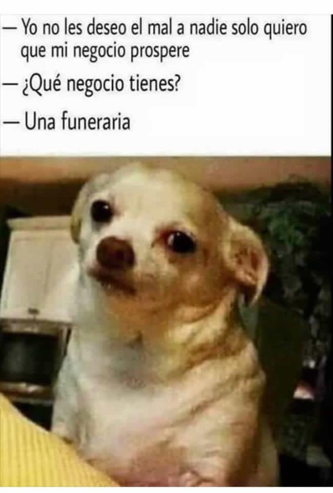 Marcianadas_236_1706160000 (15)