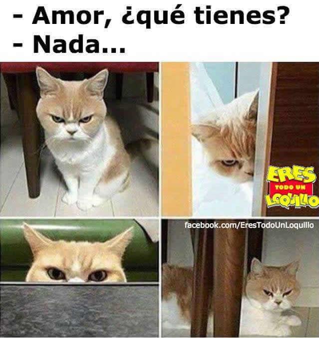 Marcianadas_236_1706160000 (23)