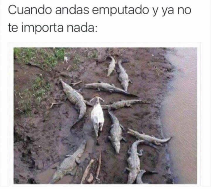 Marcianadas_236_1706160000 (37)