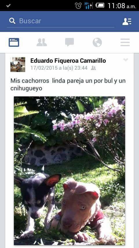 Marcianadas_236_1706160000 (39)