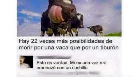 Marcianadas_236_1706160000 (71)