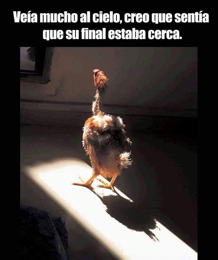 Marcianadas_236_c3_17061600 (2)