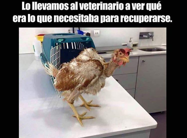 Marcianadas_236_c3_17061600 (3)