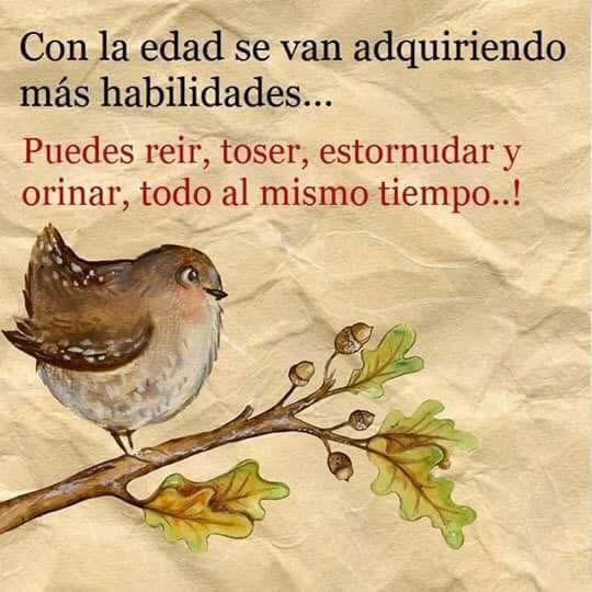 Marcianadas_237_2306160000 (125)