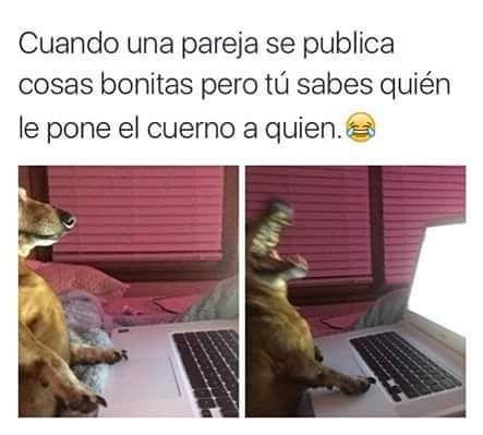 Marcianadas_237_2306160000 (131)