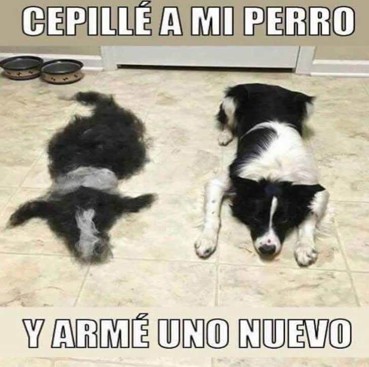Marcianadas_237_2306160000 (214)