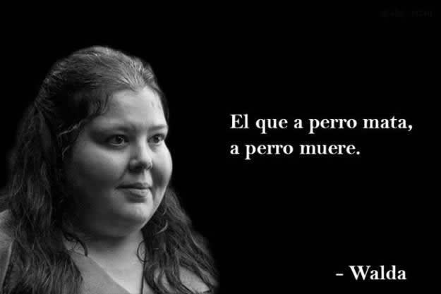 Marcianadas_237_2306160000 (216)