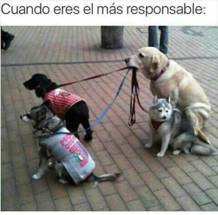 Marcianadas_237_2306160000 (225)