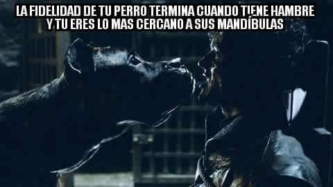 Marcianadas_237_2306160000 (227)