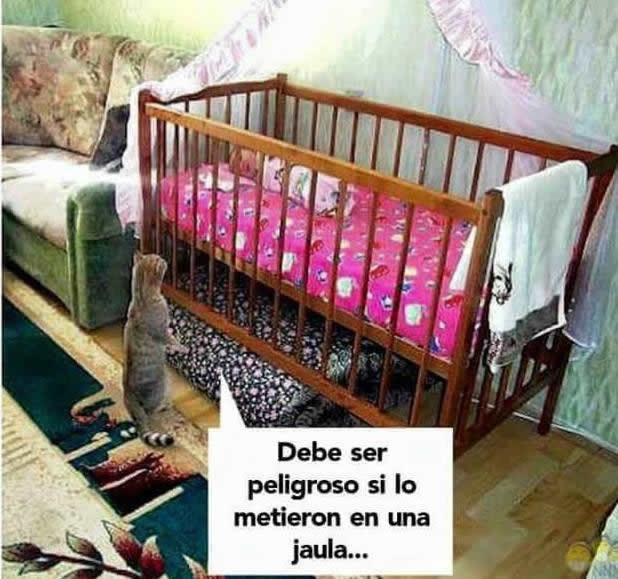 Marcianadas_237_2306160000 (261)
