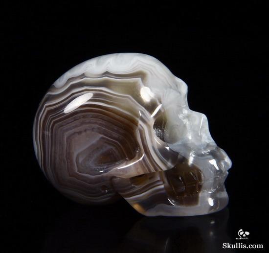 craneos de cristal (15)