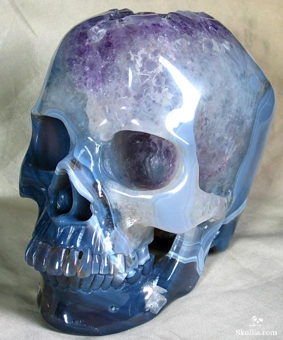 craneos de cristal (2)