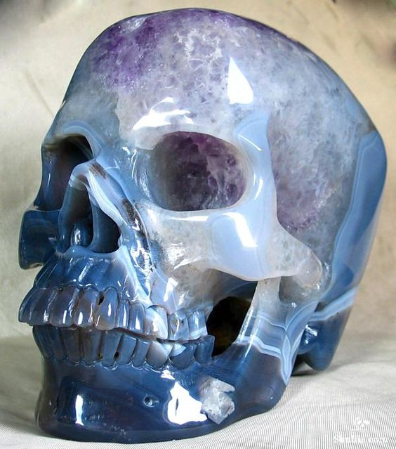 craneos de cristal (23)