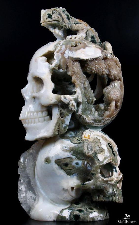 craneos de cristal (26)